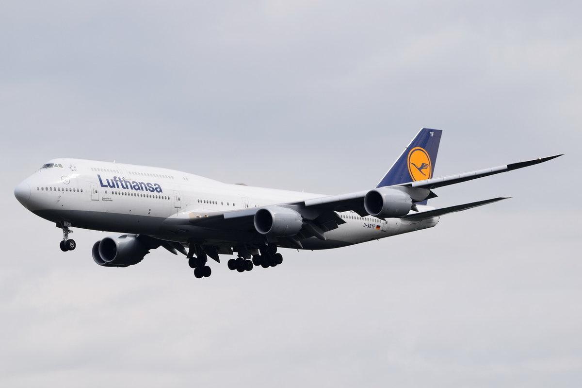 d abyf lufthansa boeing 747 830 sachsen anhalt in frankfurt beim landeanflug am. Black Bedroom Furniture Sets. Home Design Ideas
