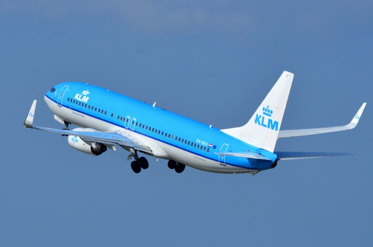 klm royal dutch airline case Case: klm emoji service klm royal dutch airlines a cutting-edge chatbot  that will help you find your way with one emoji just send an emoji along with.