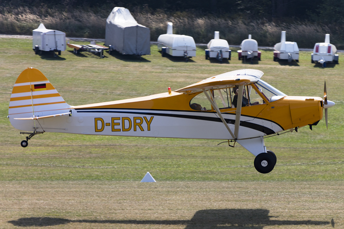Private, D-EDRY, Piper, PA-18-95 Super Cub, 09.09.2016, EDST, Hahnweide, Germany