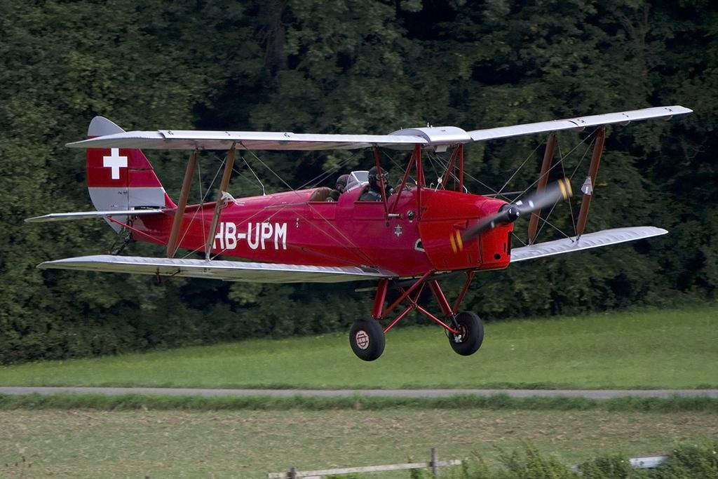 Amazing Private HBUPM DeHavilland DH82A Tiger Moth 06092013 EDST Hahnweide