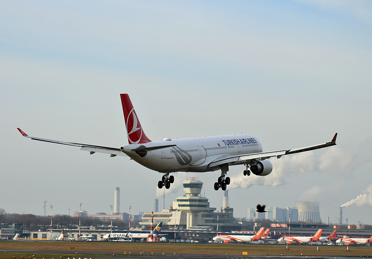 Turkish Airlines, Airbus A 330-303, TC-LND, TXL, 15.02.2020