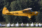 Private, D-EIBL, Piper, PA-18-135 Super Cub, 10.09.2016, EDST, Hahnweide, Germany